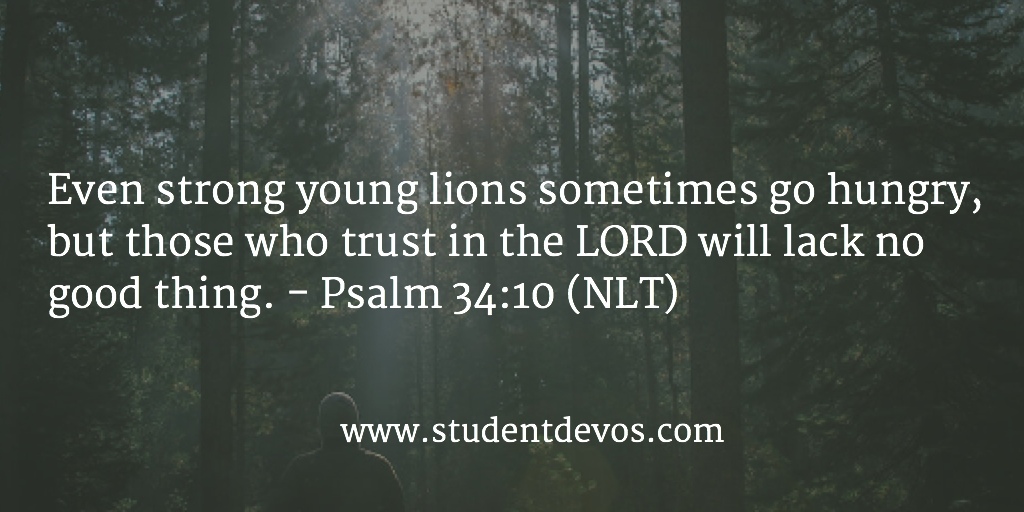 Daily Devotion Trusting God