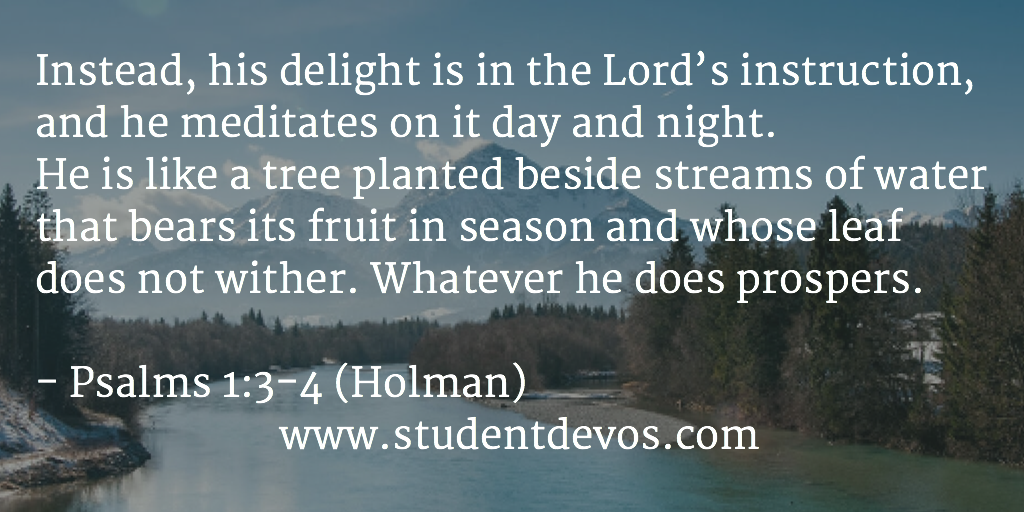 Daily Devotional on meditating on God's word with daily Bible verse