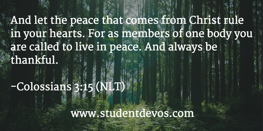 Peace daily Devotion and Bible verse Coll 3:15
