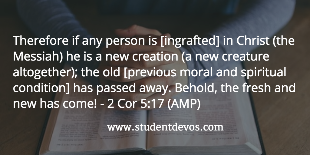 Who You Are In Christ daily Bible Verse and Devotion