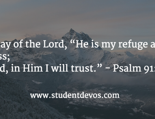 Daily Bible Verse and Devotion on Trusting God