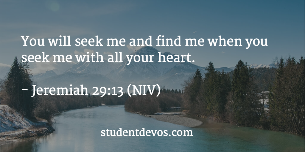 Daily devotional on seeking the Lord