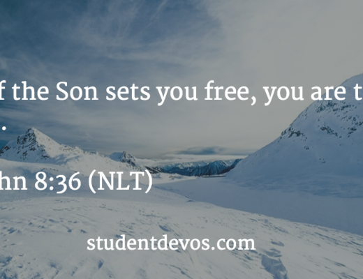 Daily devotional on knowing Jesus has set you free