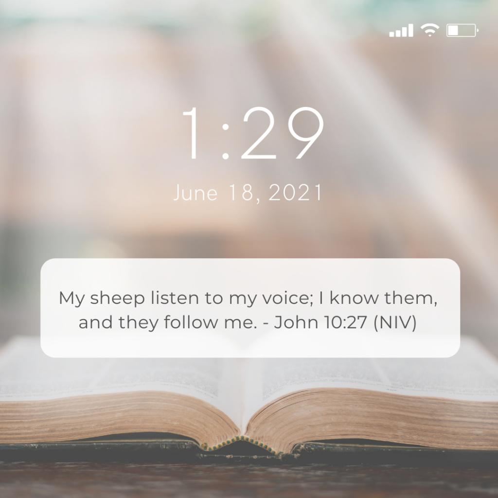 John 10:27 (NIV)