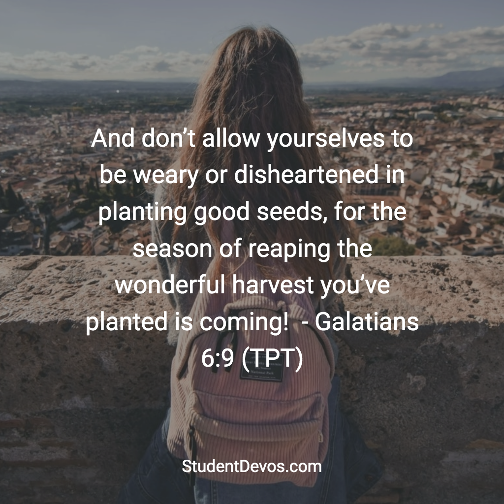 Daily Bible Verse and Devotion - Don't give up