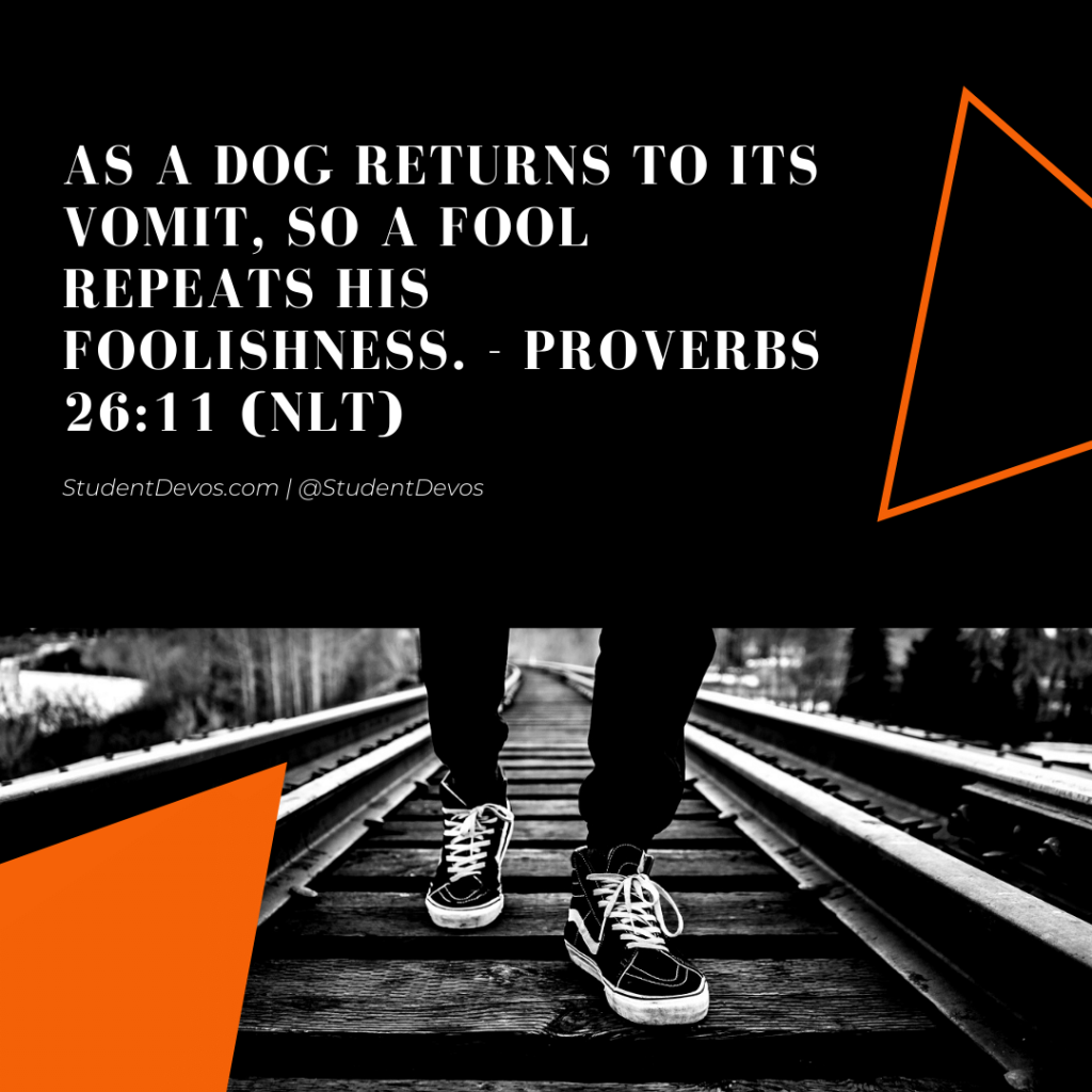 Teen Devotion and Bible Verse on Fools
